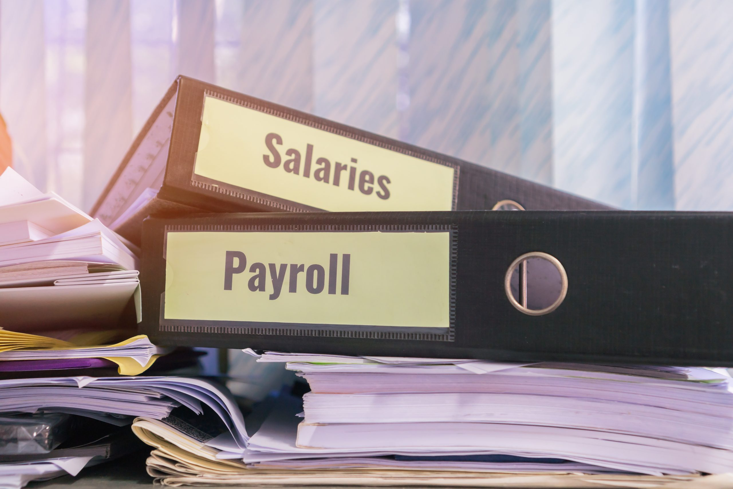 Payroll Service Providers In India